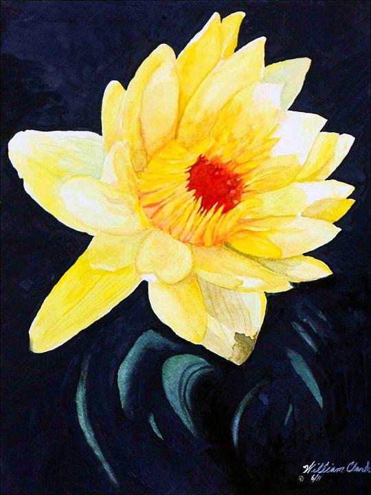 """""""Sun Kissed"""" - Will Clark Art"""