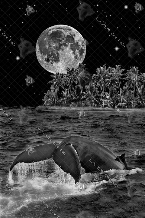 vertical-whale-moon-24 - Laser On Inc