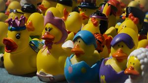 Marching To Your Own Ducky