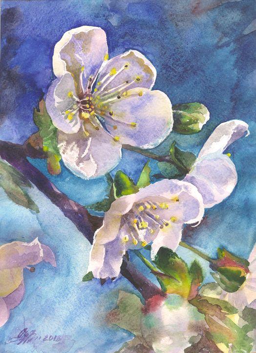 Cherry blossoms 21,5Х29,5cm - Alla Cherniavska