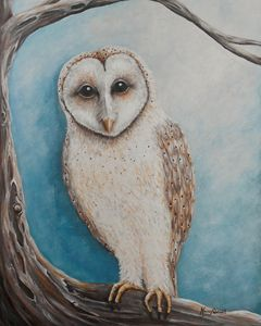 Barn Owl - Nancy Q Studio