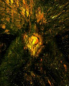 Seed of Doom I - A Rotting Tree