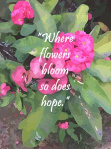 Where flowers bloom so does hope - Jangel Nolasco