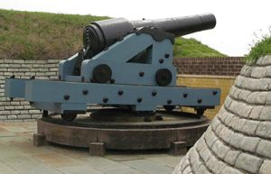 Ft. Moultrie Canon