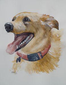 BINDI, Original Watercolor - David K. Myers Watercolor/ Photo Gallery