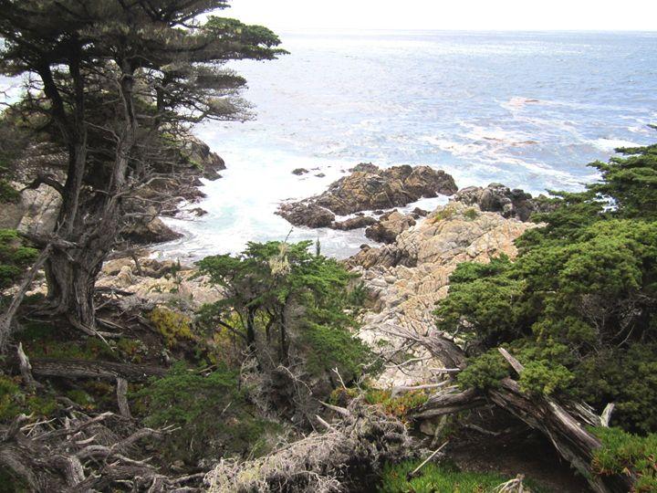 CALIFORNIA COAST, Monterey - David K. Myers Watercolor/ Photo Gallery