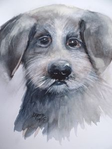 Shelter Puppy, Original Watercolor - David K. Myers Watercolor/ Photo Gallery