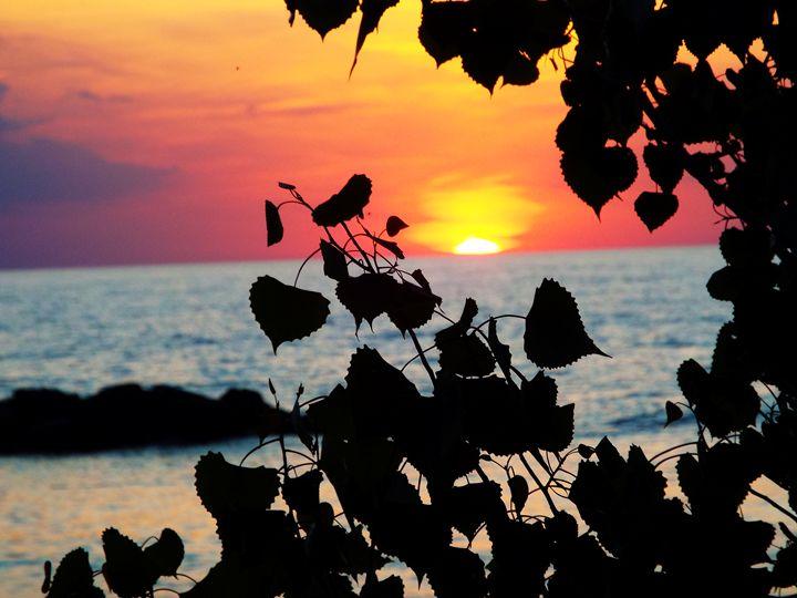 Beach Sunset - Shayne's Photography