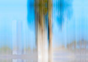 Moving Trees 13 - Welborne Fine Art