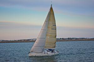 Evening Sailing in Boston HArbor - Welborne Fine Art
