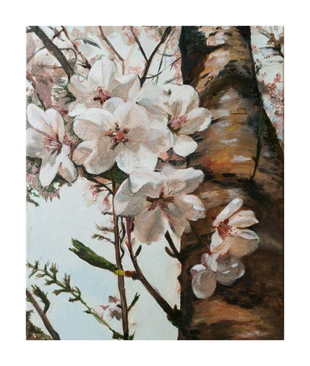 Cherry Blossoms - Lenka Graner's Paintings