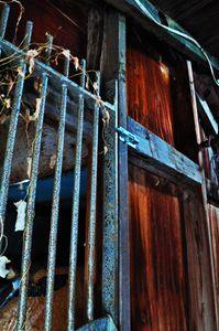 Backyard shed 2
