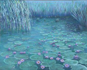 Waterlillies at Bundaberg
