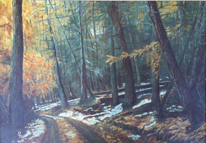 Canadian Bush Track. - Dorothy Hollings