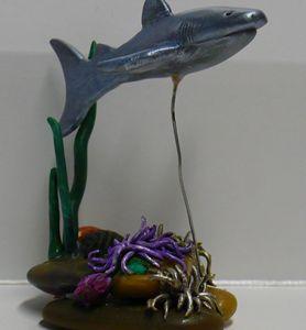 Shark Swimming Over Sea Anemones