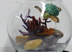 Sea Turtle in a Goldfish Bowl