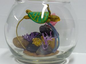 Sea Turle Coral Reef Fish Bowl