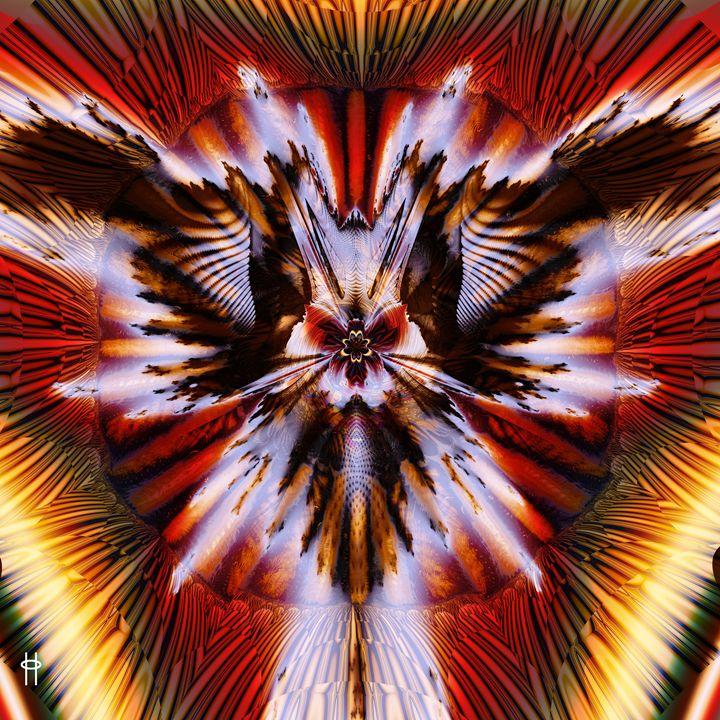 Mothra - Pavelle Fine Art