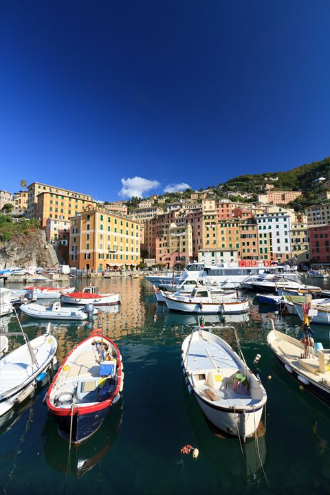 fishing boats in Camogli - Antonio-S