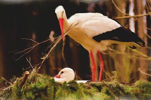 Stork Nest Building - Painting