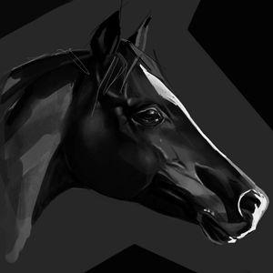 Horse - KatyaMalina