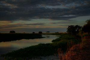 Paraná Sunset