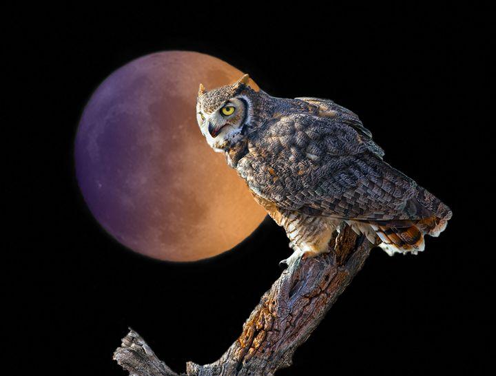 Moonlight Vigil - Steampunk