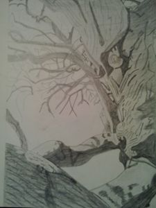 Crooked Tree sketch