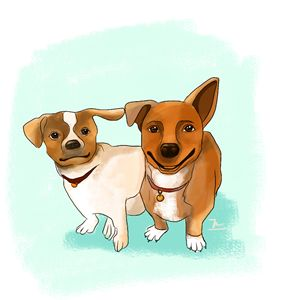 The Couple Dog