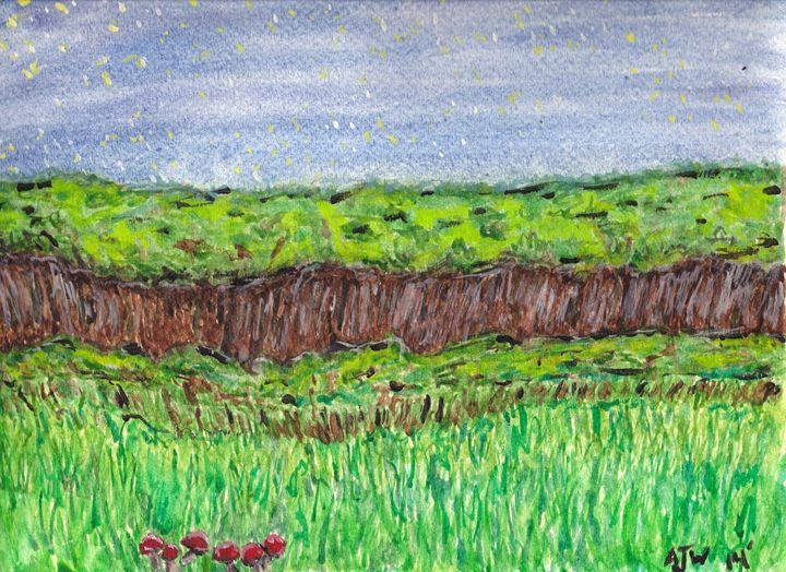 Night in the Meadow - AJ Worley