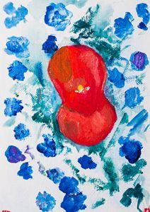 Poppy 13