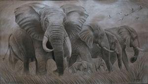 Pencil shading-Elephant