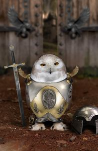 Owl warrior