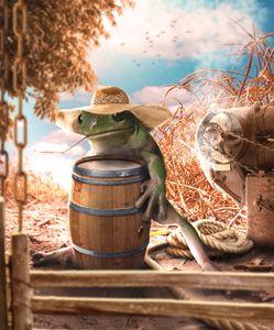 Farm Frog