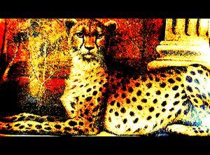 Regal Leopard