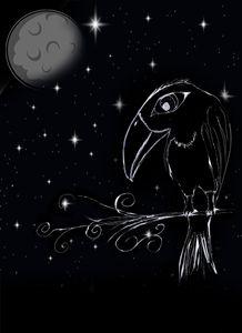 bird in noir