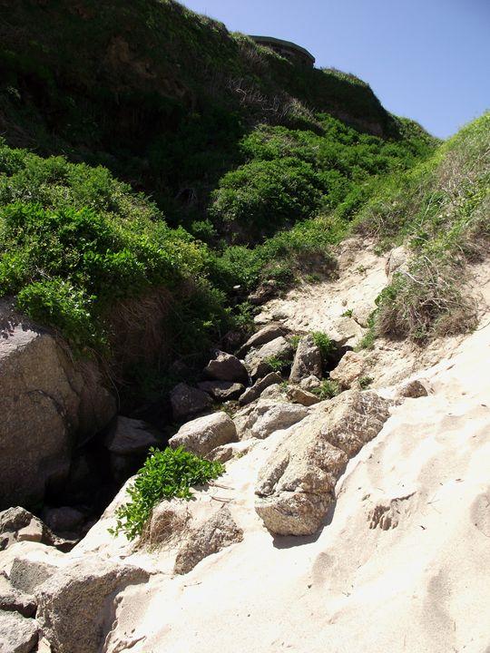 Green dunes - Maili J McQuaid