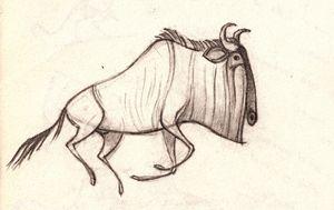 Wildebeest - Venneberg
