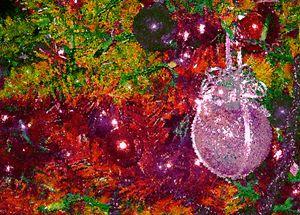 Color My Tree II - francine stuart