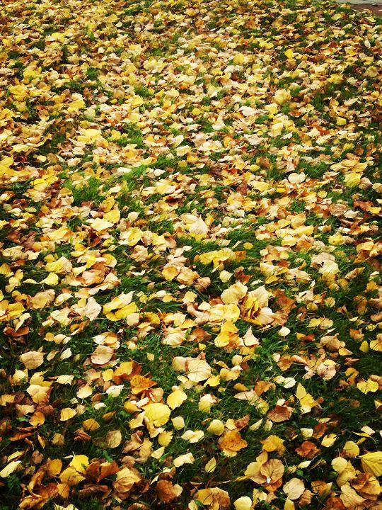 Autumn leaves - Ema's Art