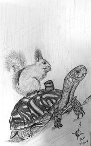 Squirrel on Turtle Eating Cake - Alex Gadala