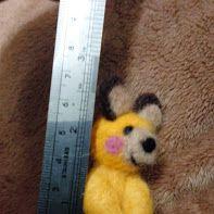 Yellow shy bear