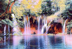 Forest Waterfalls