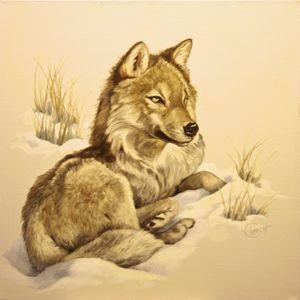 Wolf in Snow   30x30, 1983, $8