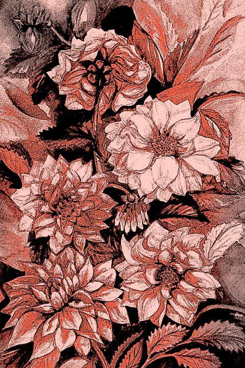 Chrysanthemums in coral - Julia Gogol Art