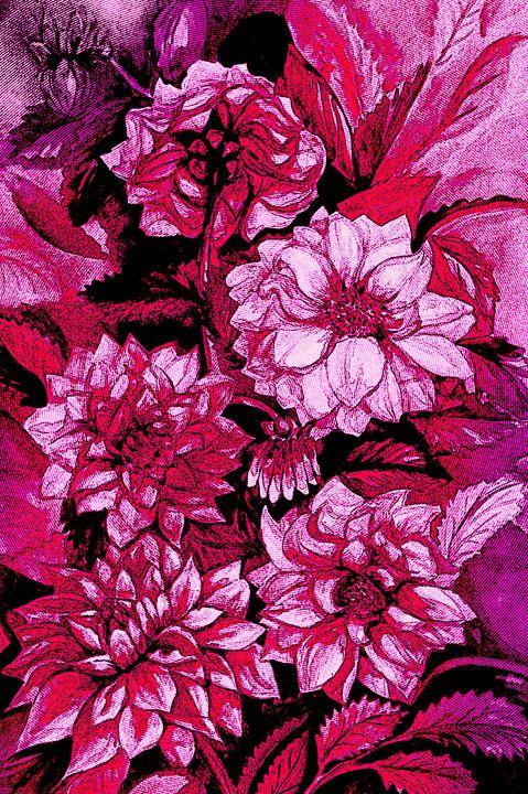 Chrysanthemums in purple - Julia Gogol Art