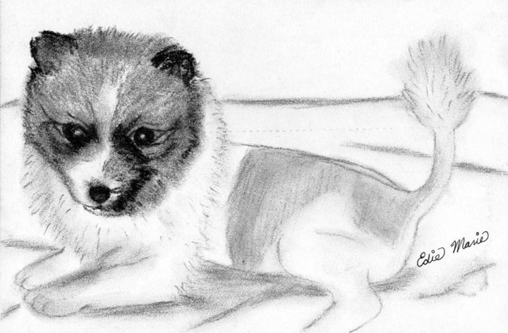 Little Lion - EdieMarie's Art
