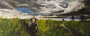 Sheep Jaap