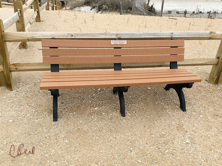 Beach Bench - MannyBell