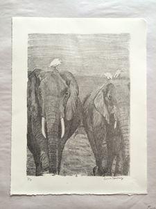 Elephant Walk 1/5